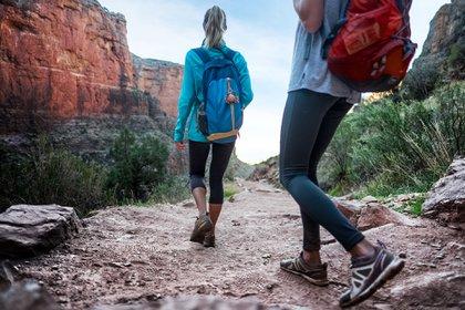 10.000 pasos diarios según la persona pueden equivaler entre 8 y 10 kilómetros (Shutterstock)