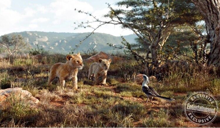 Nala, Simba y Zazú en la sabana (Foto: Disney/Entertainment Weekly)