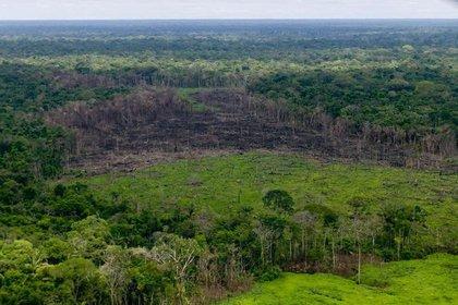 Imagen de archivo de una zona boscosa con deforestación en la Sierra de Chiribiquete, Colombia, Abril 28, 2019. Cortesía de la Presidencia de Colombia/Distribuida vía RREUTERS. ATENCIÓN EDITORES, ESTA IMAGEN FUE CEDIDA POR UN TERCERO