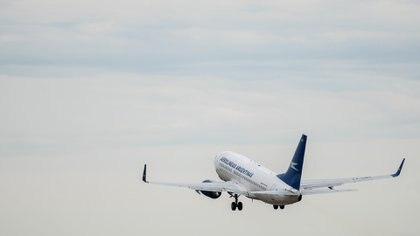 Los pasajes aéreos para destinos locales estuvieron entre lo más buscado (Adrián Escandar)