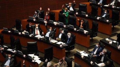 El Senado se tomó apenas unas horas para aprobar la Ley de Amnistía, en medio de la pandemia de coronavirus en México (Foto: Cuartoscuro)