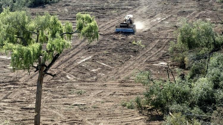 La deforestación del Amazonas se incrementó más del 88% en junio, comprado con ese mes el año pasado, según datos de la INPE.