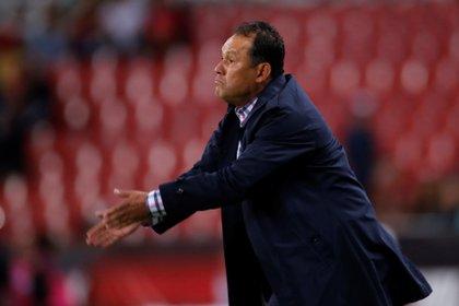 Juan Reynoso admitió que a su plantilla le faltan refuerzos para mejorar su rendimiento (Foto: Francisco Guasco/ EFE)