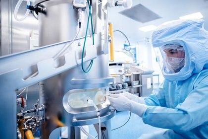 Los científicos siguen investigando la efectividad de las vacunas lanzadas frente a las nuevas mutaciones del SARS-CoV-2 / BionTech/Handout via REUTERS