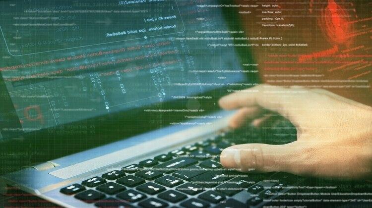 Muchas empresas tienen programas bug bounty que consisten en ofrecer a hackers recompensas para que encuentren y reporten vulnerabilidades en los sistemas informáticos (iStock)