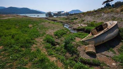 En fotos: los estragos de la terrible sequía en México