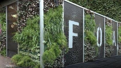 Si bien fueron creadosen 1953 por el botánico Patrick Blanc en París, la tendencia de los jardines verticales aparece por año 2000