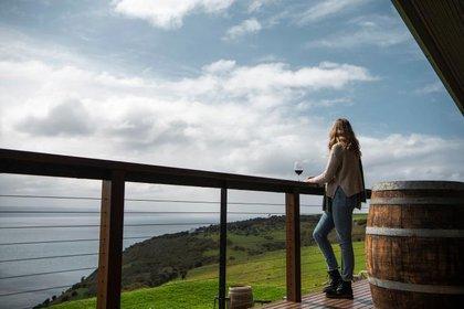 Dudley Wines Kangaroo Island South Australia (Tourism Australia)