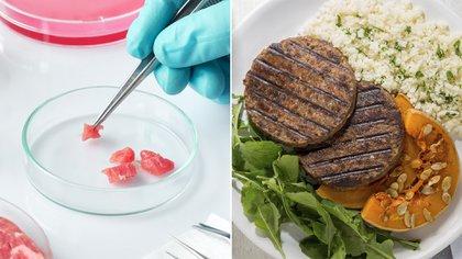 La carne vegetal y la de laboratorio se hacen cada vez más fuertes dentro de la industria alimenticia (Shutterstock)