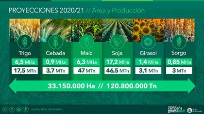 Proyecciones para la actual campaña agrícola, elaboradas por la Bolsa de Cereales de Buenos Aires