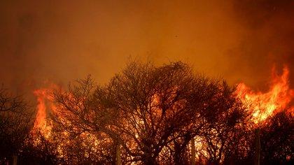 En Córdoba, el fuego arrasó con unas 190.000 hectáreas este año y todavía hay focos activos (Mario Sar).