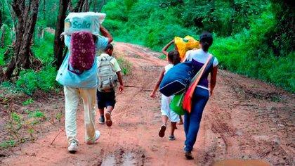 Desplazamiento forzado de campesinos en Colombia por el conflicto armado. Foto: Colprensa