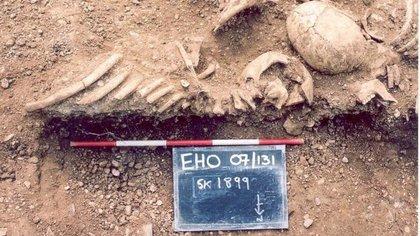 22/07/2020 Los vikingos padecían viruela y pudieron haber ayudado a propagar el virus más mortal del mundo.  Los científicos han descubierto cepas extintas de viruela en los dientes de los esqueletos vikingos, lo que demuestra por primera vez que la enfermedad mortal afectó a la humanidad durante al menos 1.400 años, según un estudio que publica la revista 'Science'.  SALUD THAMES VALLEY ARCHAEOLOGICAL SERVICES