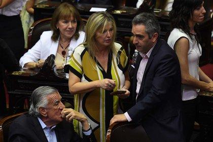 Larroque ocupa una banca en la Cámara de Diputados de la Nación (Maximiliano Luna)