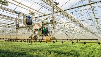 Mayor sustentabilidad y precisión son dos de las ventajas que otorgan el uso de la tecnología. (Getty Images)