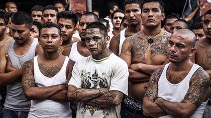 Integrantes de las maras en una de las cárceles salvadoreñas donde consiguieron mayores libertades a cambio de disminuit la violencia y apoyar al partido de gobierno en las elecciones. (EFE)