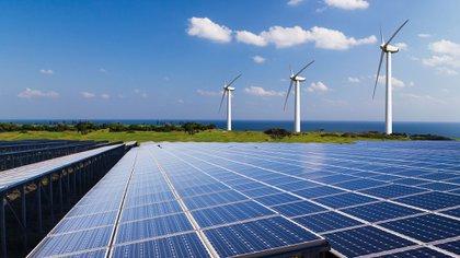 El oficial de WWF para México reiteró la importancia del papel de las empresas para iniciar la transición hacia energías renovables (Foto: Archivo)