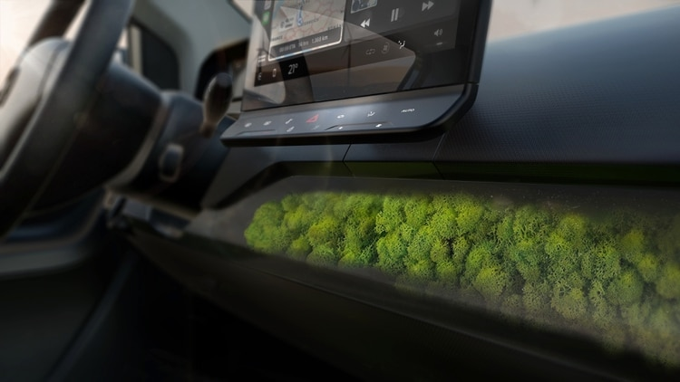 Los musgos funcionan como filtros naturales de probada eficacia. En algunas ciudades de Europa ya hay grandes paneles con los que purifican el aire (Crédito: Prensa Sono Motors)
