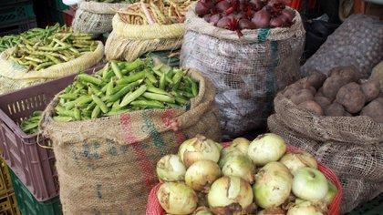 Por bloqueos, Antioquia registra aumento de precio en los alimentos pero no desabastecimiento