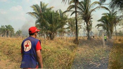 Uno de los ocho brigadistas de la Cruz Roja recorre la frontera entre Brasil y Bolivia. Las secuelas del incendio son innumerables: humo, cenizas y enfermedades gastrointestinales, dérmicas y respiratorias. Foto: Gentileza de la Cruz Roja.