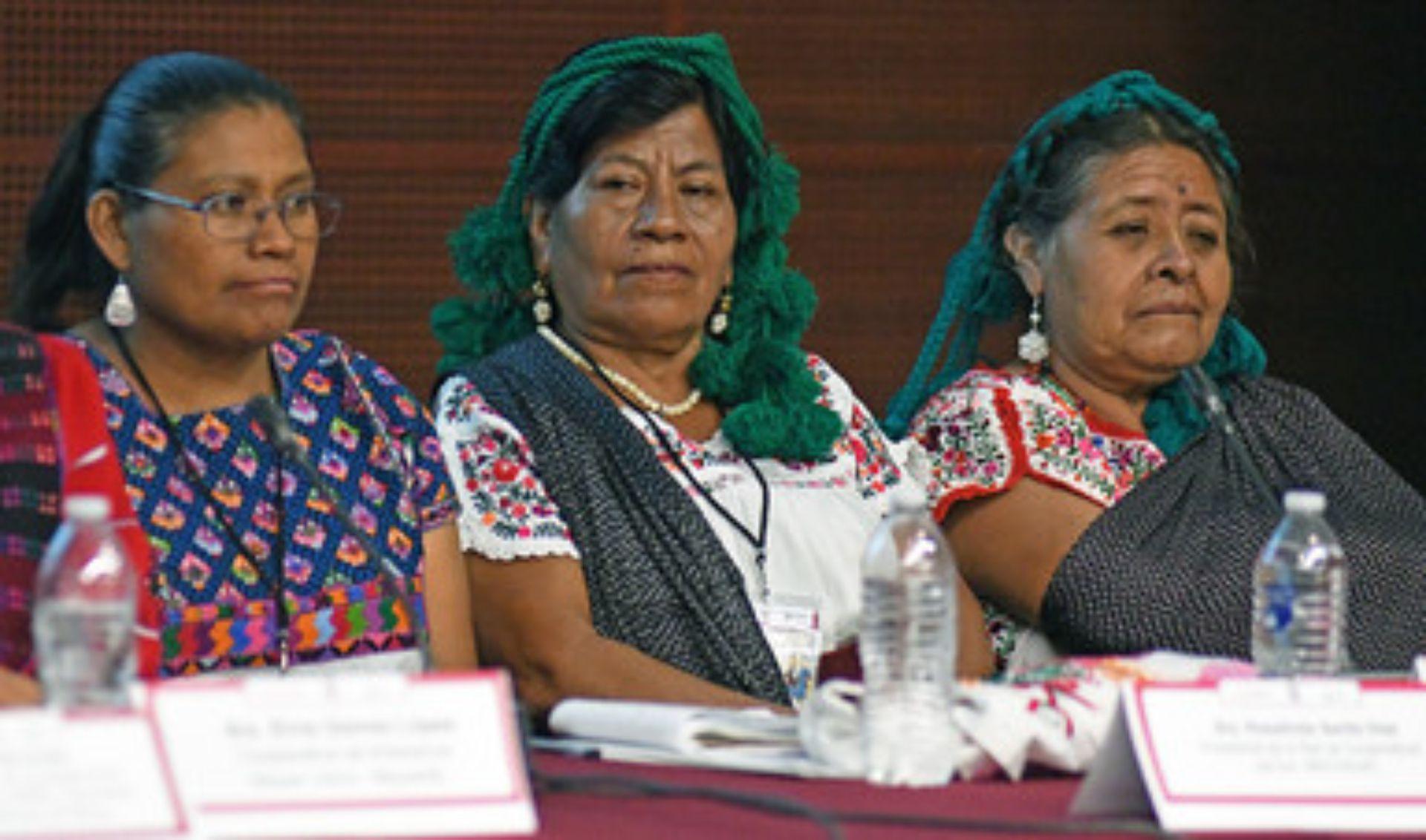 Miembros de las comunidades afectadas participaron en el foro que (Foto: Secretaría de Cultura)