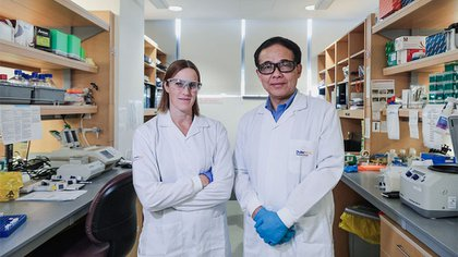 El doctor Wang con una colega en su laboratorio en Singapur (Univ. Duke)