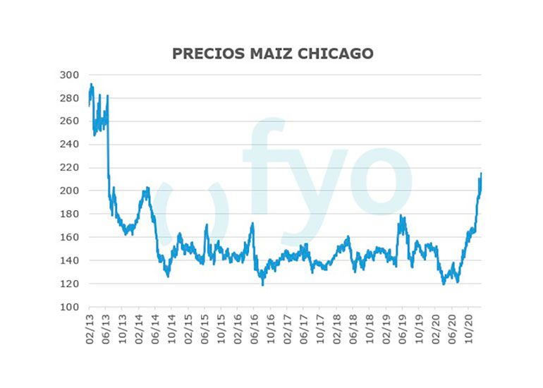 precios-maiz