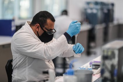 México apunta a posibles acuerdos con otros laboratorios que realizan estudios con miras a producir vacunas en un futuro próximo.  (Foto: EFE / Juan Ignacio Roncoroni)