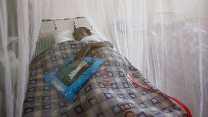 La malaria produce estragos en Venezuela (EFE)