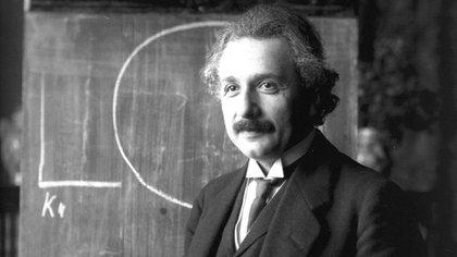 El cerebro de Albert Einstein luego de su muerte fue diseccionado en 240 bloques. Algunos de ellos llegaron a la Argentina para su estudio, a solicitud del científico argentino Jorge Colombo. (Getty Images)