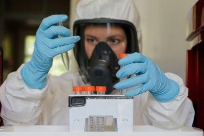 Un científico trabaja dentro de un laboratorio del Instituto de Investigación de Epidemiología y Microbiología de Gamaleya durante la producción y prueba de laboratorio de una vacuna contra la enfermedad por COVID-19, in Moscú, Rusia. (Foto: RDIF/Handout via REUTERS)