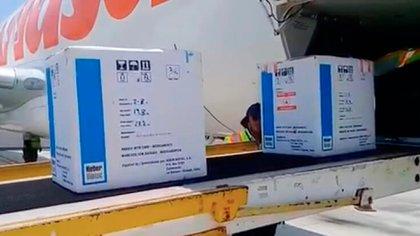 Ocho mil dosis de interferón llegaron a Managua desde Cuba a principios de abril. No se ha sabido de nuevos desembarcos del fármaco. (Foto de El 19 Digital)
