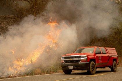 Incendio en California (EFE)