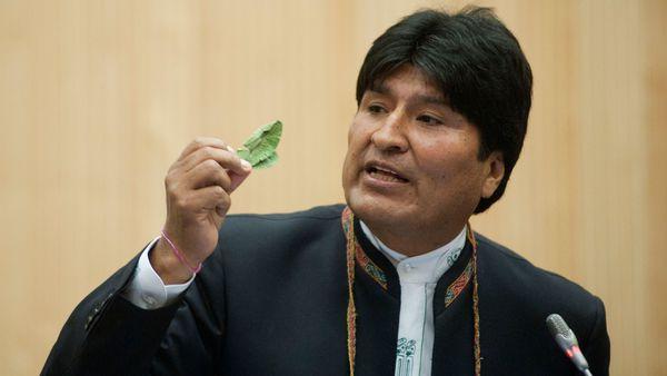 Evo Morales promulgó una polémica ley que amplía la superficie de cultivo de coca en Bolivia