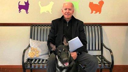 Joe Biden y su perro Major (foto de archivo)