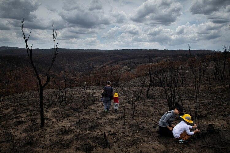 El paisaje desolado en Bell, luego del incendio (The New York Times)