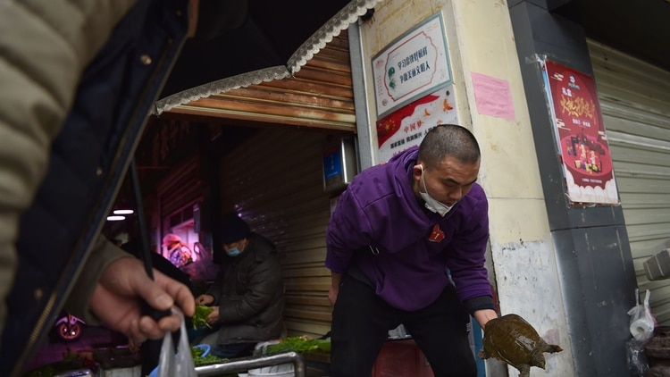 Un hombre transporta animales en un mercado de Wuhan (AFP)