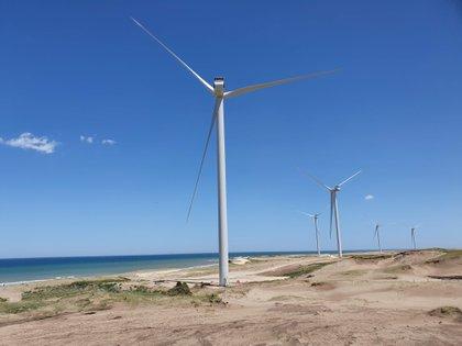 El municipio de Puerto Madryn les impuso una tasa que cobra al resto de las empresas de la zona