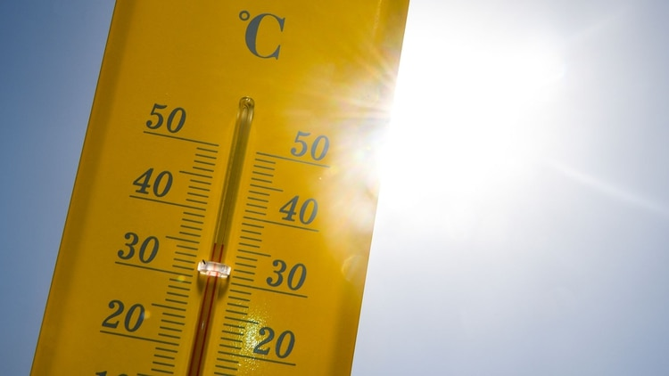 El número de personas de más de 65 años expuestas a olas de calor alcanzó la cifra récord de 220 millones más en 2018 que en el 2000 (Photo by Damien MEYER / AFP)