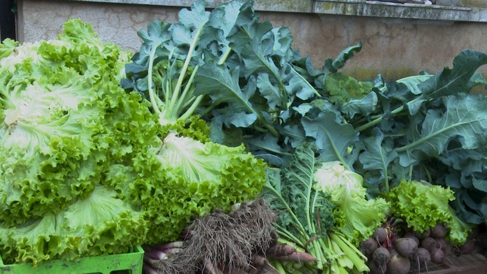 Así son las verduras producidas por los campesinos