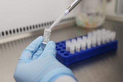 Las pruebas con anticuerpos monoclonales resultaron existosas en laboratorio.