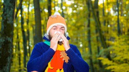 Según un estudio, el coronavirus puede sobrevivir en superficies exteriores durante más tiempo en otoño (Foto: Shutterstock)