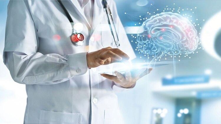 Las científicas estudiaron los procesos de la memoria (Shutterstock)
