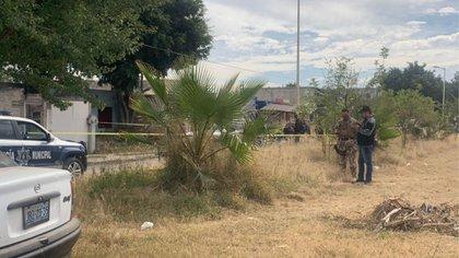 Las bolsas con los cadáveres fueron trasladadas al Semefo, donde se determinará la cantidad de víctimas encontradas (Foto: Twitter/@Gerardosedano)
