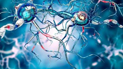 Durante el ASPO por COVID-19, se produjo un deterioro de los síntomas conductuales de las personas adultas mayores con demencia y/o Alzheimer (Shutterstock)