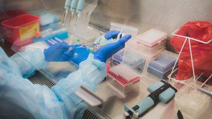 Hace exactamente un año, con fecha oficial 10 de enero de 2020, Zhang Yongzhen y su equipo publicaron la secuencia genética completa (genoma) del virus responsable de un brote de neumonía viral en Wuhan, el que luego sería llamado coronavirus SARS-CoV-2