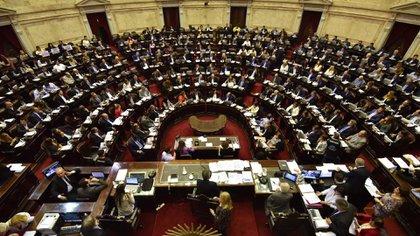 Actualmente, las mujeres representan el 38% del total de diputados de la Nación.