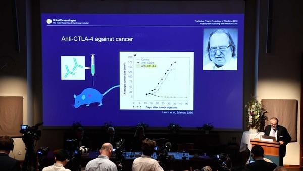 """El galardón compartido a James P. Allison: sus estudios en ratones en torno a la proteína CTLA-4, que """"frena"""" el sistema inmunológico contra el cáncer (AFP)"""