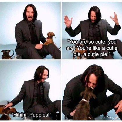 Otro de los aspectos más queridos del actor es que adora a los cachorros (Foto: Twitter/@primallassie)