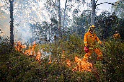 Operativo de bomberos en Victoria (Reuters)